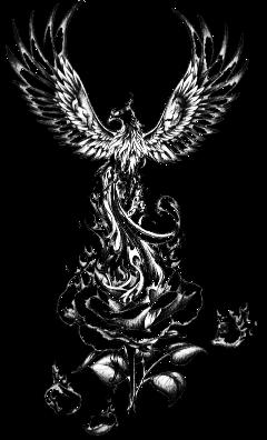 tatoo falcon falke eagle rose freetoedit