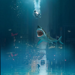 city citylife cityscape citywater water sea Shark car boy aziz vipaziz deep beach bubbles underwater sharks ocean