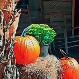 freetoedit autumn fall pumpkin pumpkins