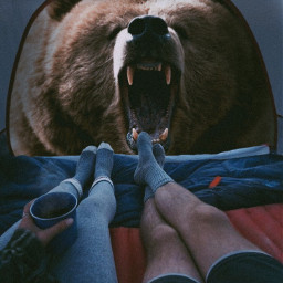 freetoedit grizzly tent couple coffee