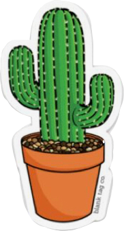 cactus aesthetic cute freetoedit