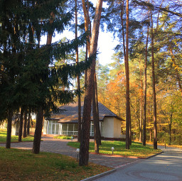 photography nature forest autumn house freetoedit