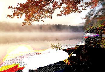 autumn tube trees landscape lake freetoedit