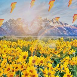 srclightning lightning freetoedit yellow yellowflowers