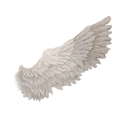 wing angel aesthetic angelwing freetoedit