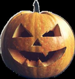 halloween abobora diadasbruxas freetoedit