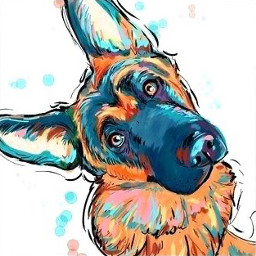 gsd gsdlove cute confued color