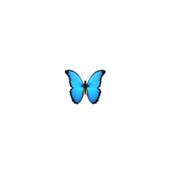 iphone butterfly blue emoji tumblr freetoedit