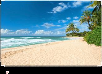 пляж freetoedit