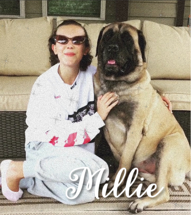 #milliebobbybrown #millie #bobby #brown 💜💖 #freetoedit
