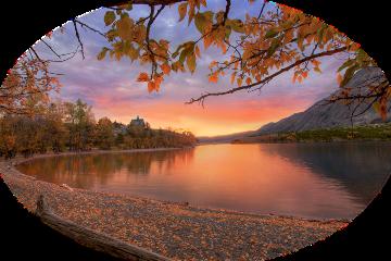 freetoedit autumn tube trees landscape