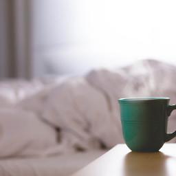 cup mug cozy freetoedit