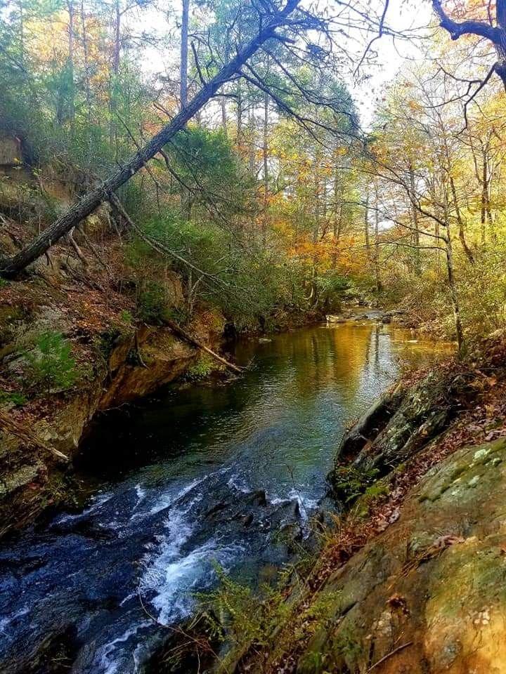 #fall #river #virginia #nofilter #blueridgeparkway  #freetoedit @robinrobertson2