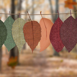 thanksgiving autumn leaves background backgrounds freetoedit