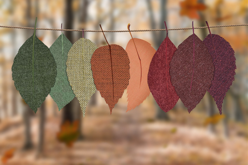 Let your imagination run wild!	 Pexels (Public Domain) #thanksgiving #autumn #leaves #background #backgrounds  #freetoedit