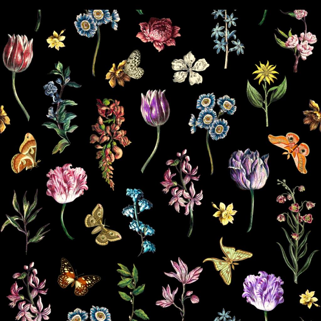 #flowers #aesthetic #flowersaesthetic #vintage #vintageaesthetic #edit