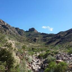 freetoedit elephant mountain desertlife elpasotx