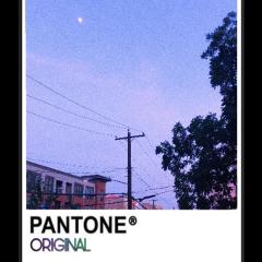pantone original sticker freetoedit remixit
