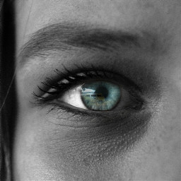 freetoedit eyes eyesblue blackandwhite ircvintagevan