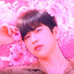 freetoedit kpop jinyoung got7 kpopedit