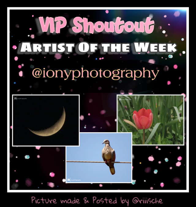 Congratulations to the Artist of the Week  🌟 @ionyphotography 🌟  Please check out this week's VIP shout-out gallery.  Picture URLs for remixing from this collage picture made by VIP @riiische are below. 👇 〰️〰️〰️〰️〰️〰️〰️〰️〰️ Urls: Moon 🌙 https://picsart.com/i/290074403031201 Bird 🐦 https://picsart.com/i/306392499151201 Tulip 🌷 https://picsart.com/i/288169386054201