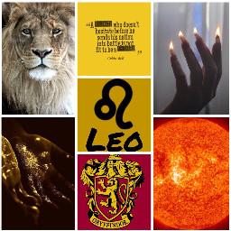 leo aesthetic zodiacsigns