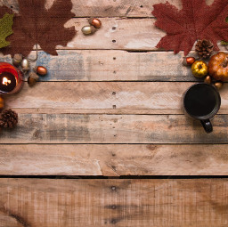 thanksgiving background backgrounds freetoedit