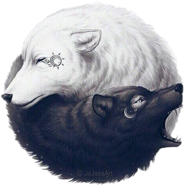 #wolf #sun #moon #blackandwhite  #scblacknwhite