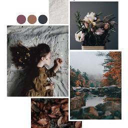 autumn autumncollage ccautumnmoodboard autumnmoodboard moodboard