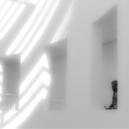 blackandwhite lines softfocus diffuse window
