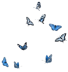 freetoedit blueaesthetic butterflies bluebutterflies soft