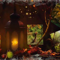 freetoedit moodboard ccautumnmoodboard autumnmoodboard autumn