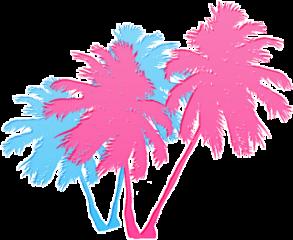 palm palmtrees tropical vacay tumblr freetoedit