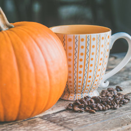 autumn pumpkin coffee thanksgiving freetoedit