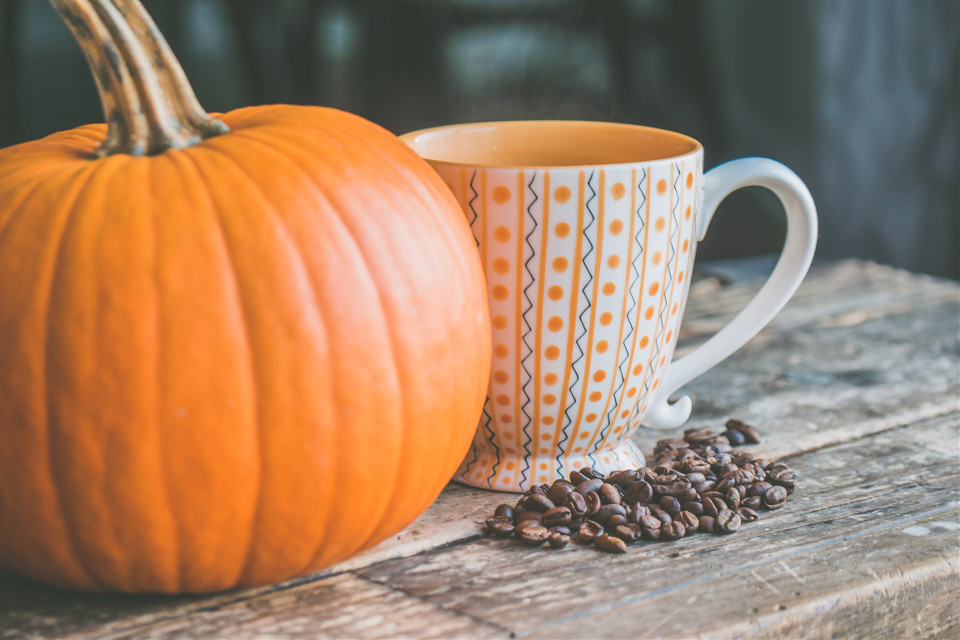 Use this image as a canvas!Pexels (Public Domain) #autumn #pumpkin #coffee #thanksgiving #freetoedit