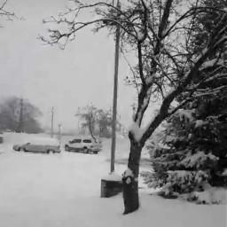 myphotography myphoto 2019 snow snowday