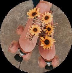 pinkaesthetic pink aesthetic flowers freetoedit
