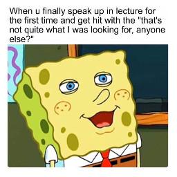 freetoedit meme memes dankmemes funny
