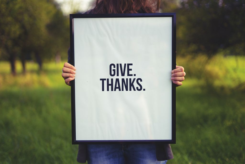 Inspire us with your creativity! Unsplash (Public Domain) #thanksgiving #board #freetoedit