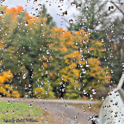 freetoedit sideview mirror rain autumncolors