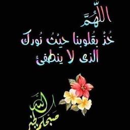 آمين_يارب_العالمين🤲❤🌷 آمين