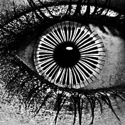freetoedit eye piano musicnotes blackandwhite