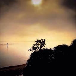 angeleyesimages landscapephotography landscape bay ocean freetoedit