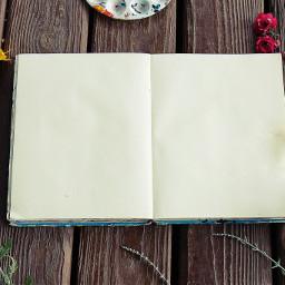 freetoedit art book empty blankcanvas