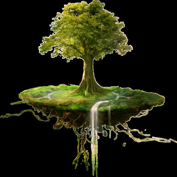 #tree #fantasy #forest #magicalworld #magical #floatingisland