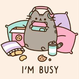 busy pusheen