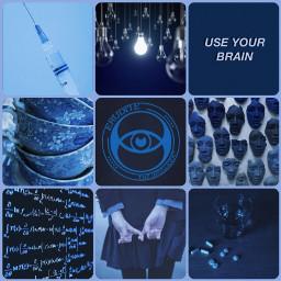 erudite divergent divergentaesthetic eruditeaesthetic blue
