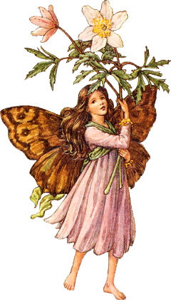 wing fairy vintage victorianstyle flowers freetoedit