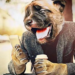 freetoedit dogman dog smile irchappypuppy happypuppy