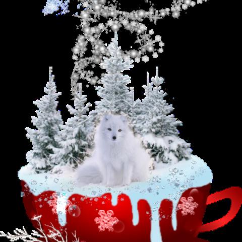 #freetoedit,#scsnowflake,#snowflake